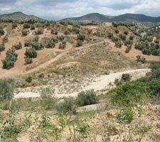 Prospeccion Arqueologica en Malaga Cuevas Bajas
