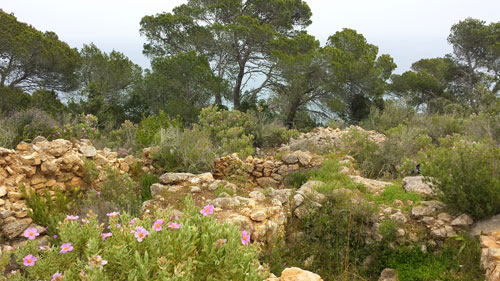 Yacimiento arqueológico de Cap des Llibrell